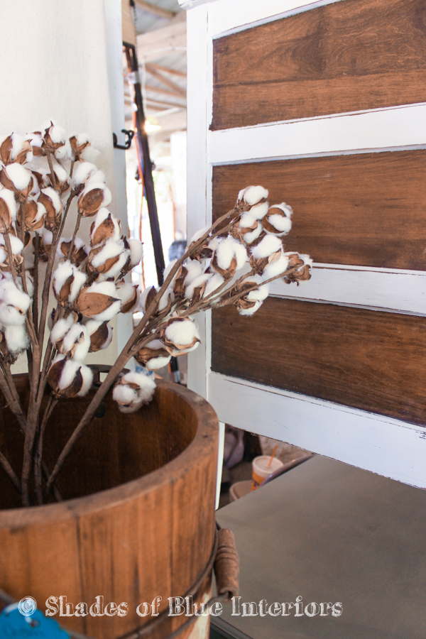 Cotton stems in a bucket at a vintage market