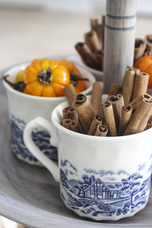 Cinnamon Sticks in Blue and White Teacup