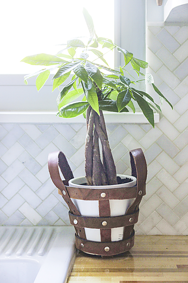 Leather belts upcycled into modern planter holder