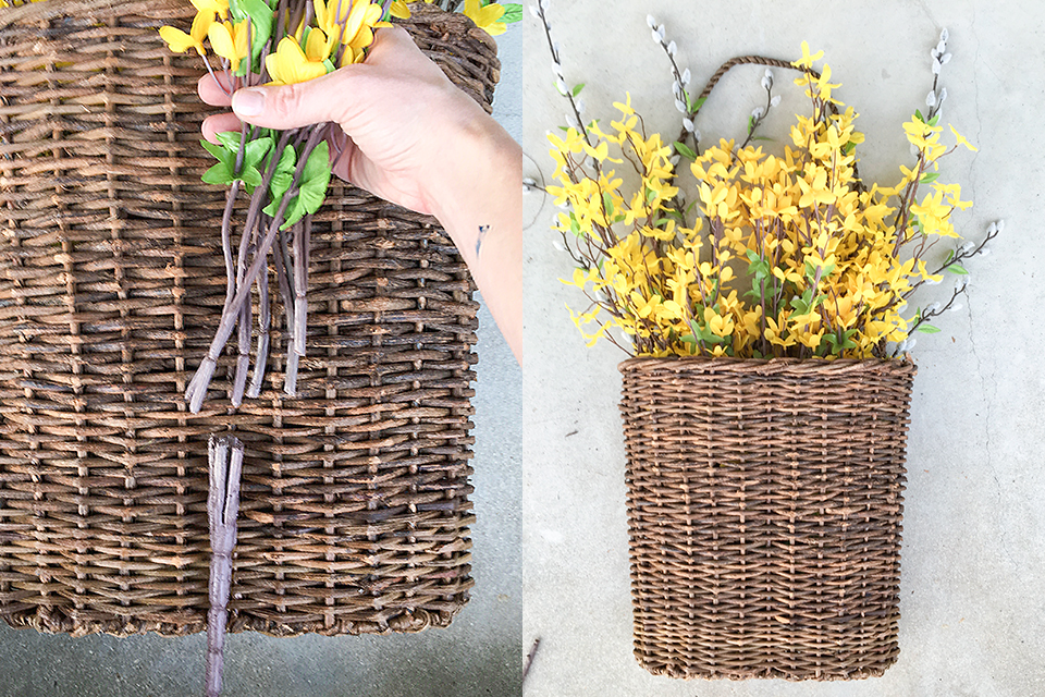 Adding-Forsythia