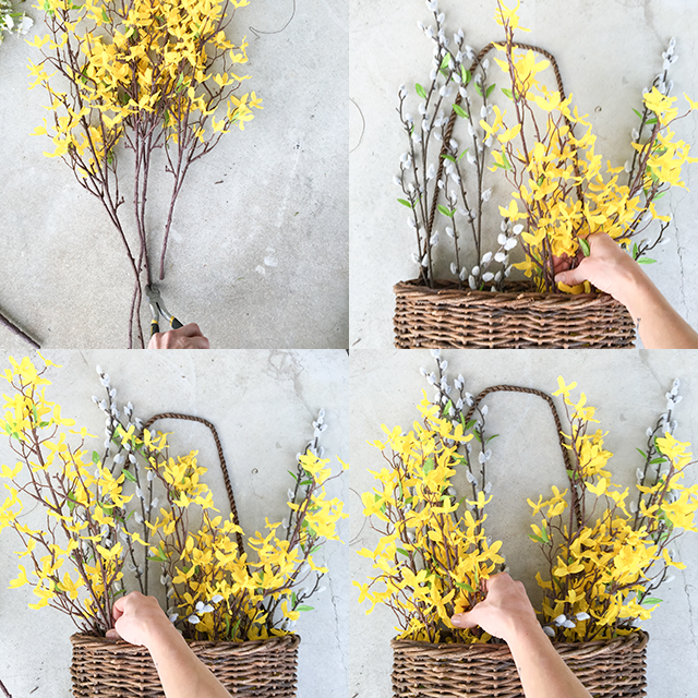 Adding Forsythia to hanging basket