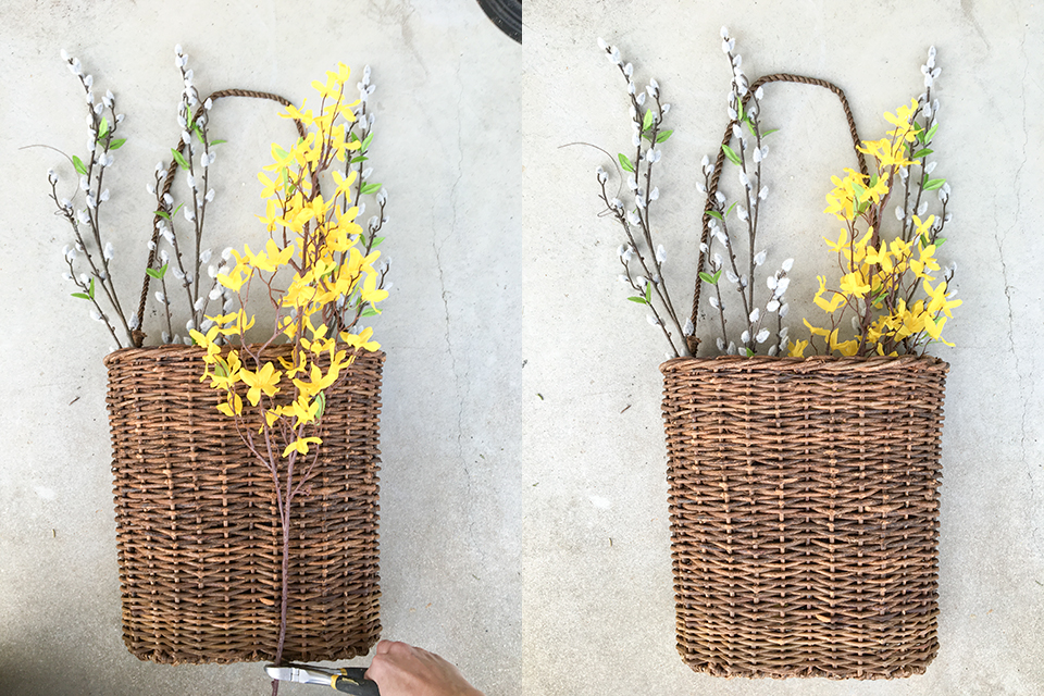 Adding Forsythia to hanging basket for spring
