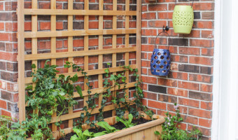 Tiered Planter with Trellis