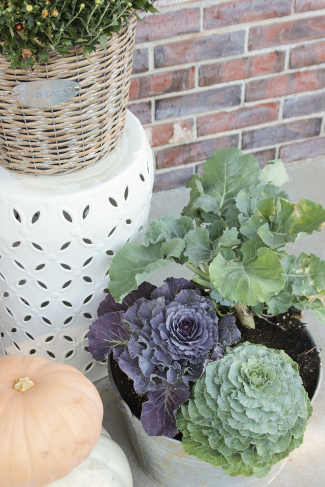 Fall front porch with cabbages, pumpkins, and mums