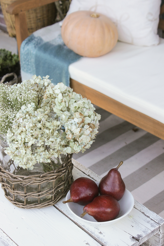 Dried hydrangeas and red pears on a fall front porch