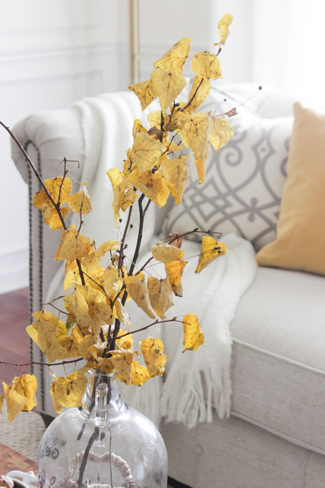 Autumn yellow leaves in vase