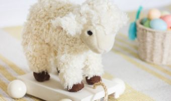 DIY Plush Pull-Toy