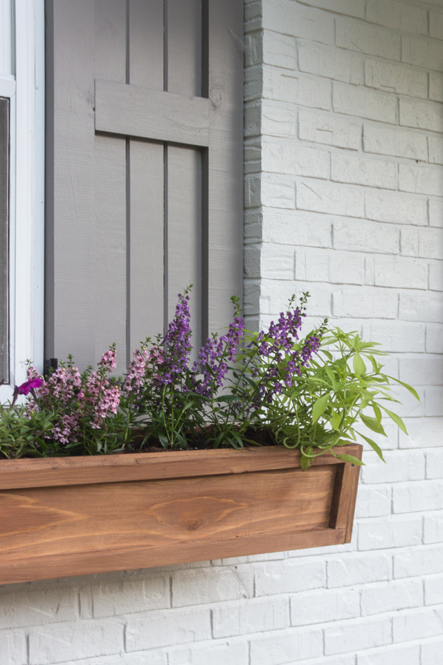 Don T Forget To Put A Thin Layer Of Pebbles Or Rocks At The Bottom Planters For Better Drainage Prevents Dirt From Clogging Drain Holes
