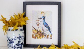 A Blue Jay in Autumn